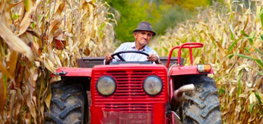 Lavoratori anziani e infortuni sul lavoro in agricoltura
