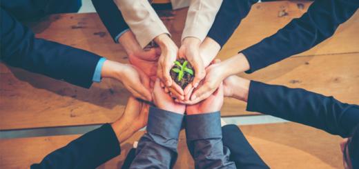 sostenibilita delle imprese