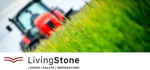 progetto LivingStone