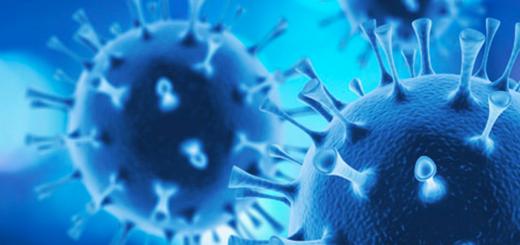 factsheet Inail sul coronavirus